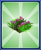 Spring-Flower-Ride---Straight