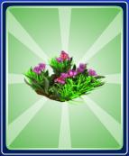 Spring Flower Ride - T-Junction - Right