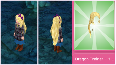 dragontrainerhair
