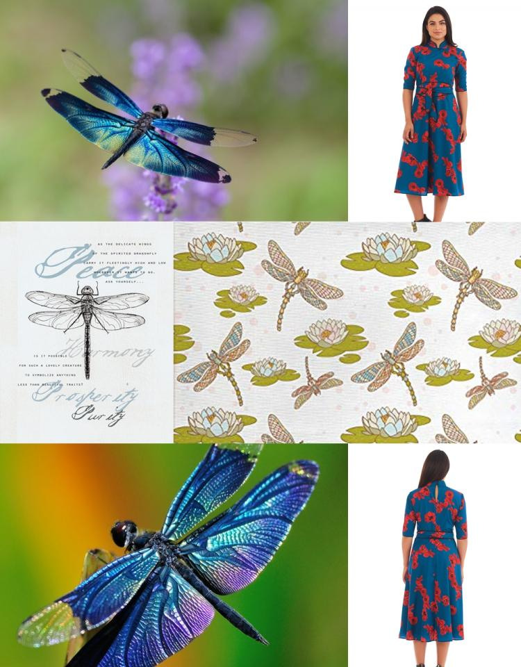 Dragon Fly Collage2