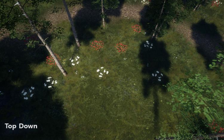 devblog_vfk3dbeta_cameraangle_topdown