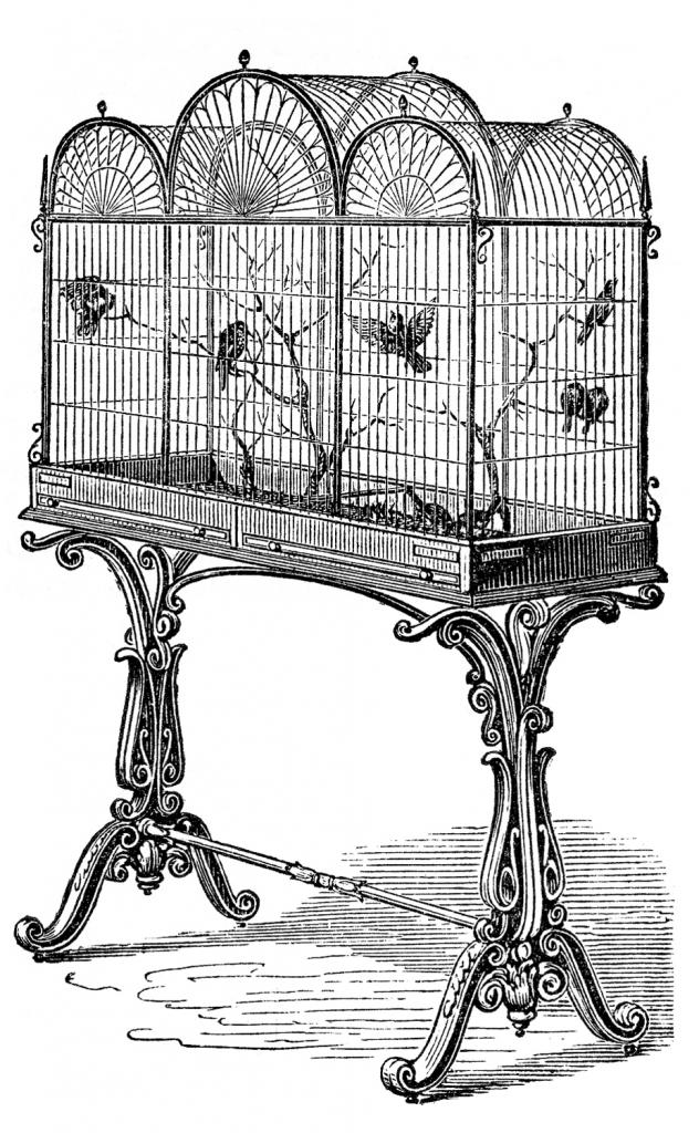 Suggest_STEAMPUNK_Bird Cage 2