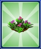 Spring-Flower-Ride---Entrance