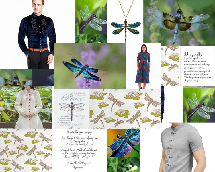 Dragon FLy COLLAGE of all time