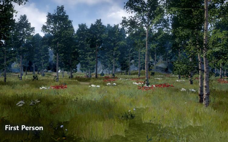 devblog_vfk3dbeta_cameraangle_firstperson