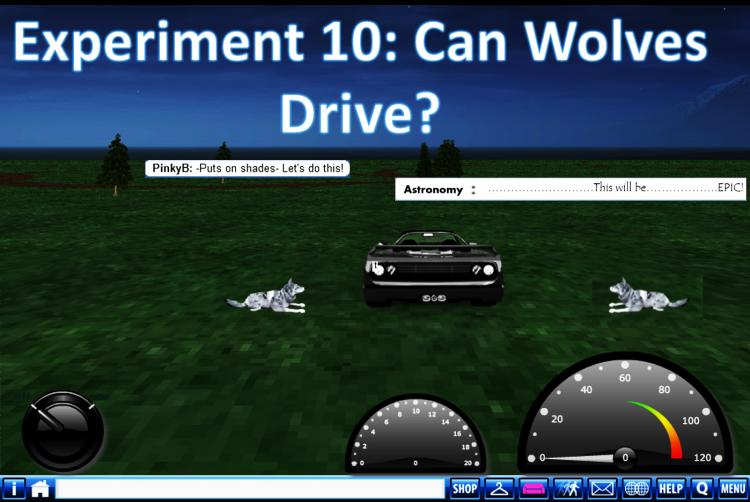 Wolf Driving Edit