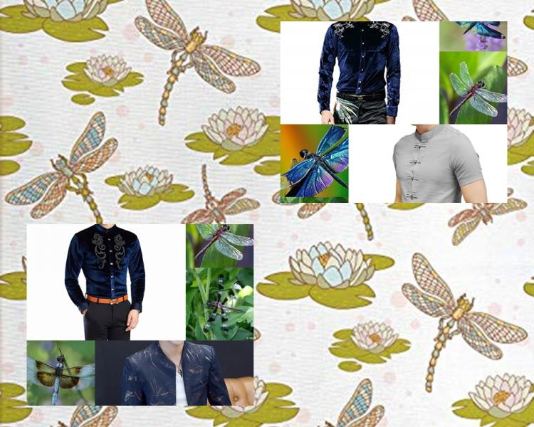 Dragon FLy COLLAGes