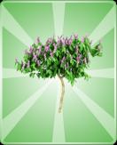 FlowerTreeLarge