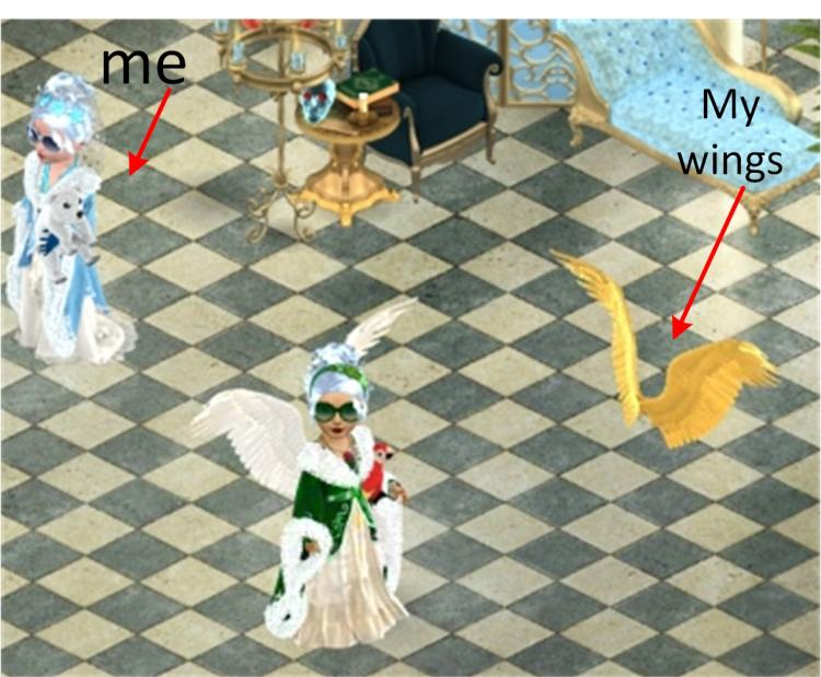 me and golden wings labelled